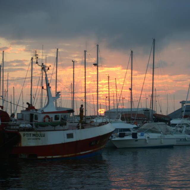 Bateaux Port De Pêche