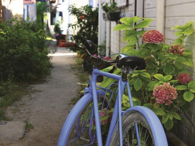 Village Ostreicole Vélo
