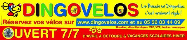 Bandeau Web 900x200 Dingo Velo